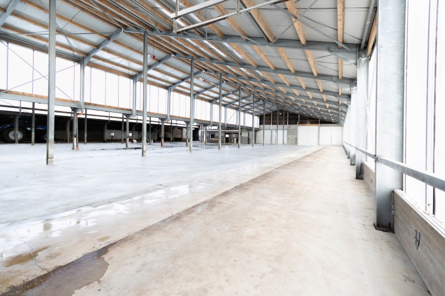lagerfläche mieten 0 zimmer 2600 m² leidenborn foto 1