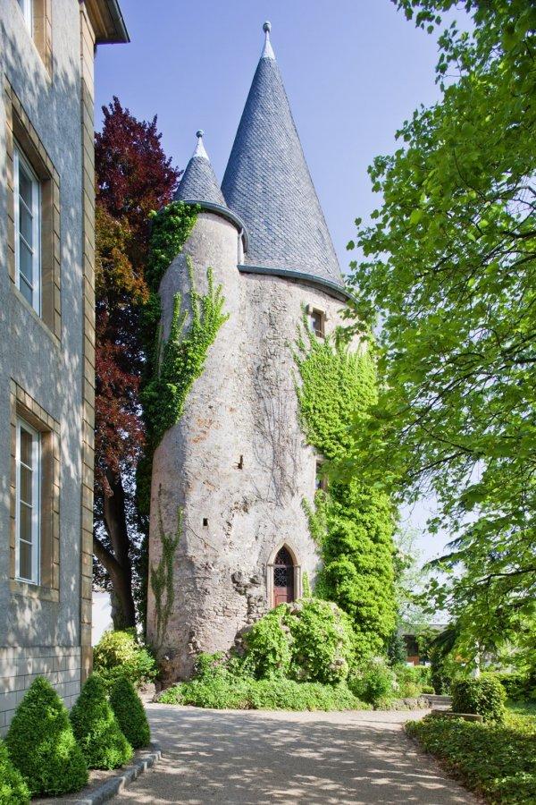 hotel for rent 0 bedroom 5559 m² schengen photo 3