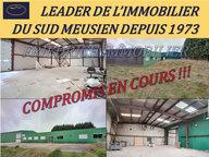 Local commercial à vendre à Dammarie-sur-Saulx - Réf. 6299742