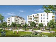 Appartement à louer F3 à Hoenheim - Réf. 6556510