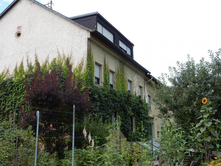 einfamilienhaus kaufen 10 zimmer 306 m² langsur foto 3