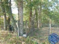 Terrain constructible à vendre à Rumont - Réf. 7257182