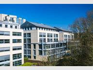 Bureau à louer à Luxembourg-Hollerich - Réf. 7347550