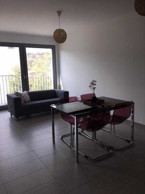 louer appartement 0 chambre 0 m² luxembourg photo 6