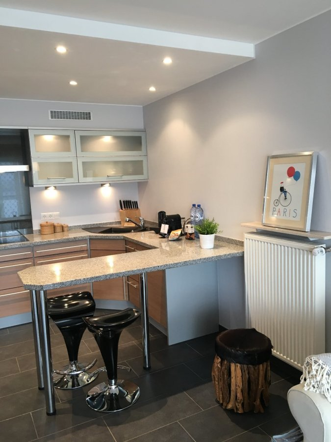 apartment for rent 2 bedrooms 65 m² leudelange photo 1