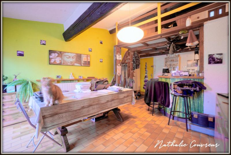 acheter immeuble de rapport 12 pièces 247 m² metz photo 5