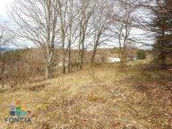 Terrain constructible à vendre à Anould - Réf. 6278510