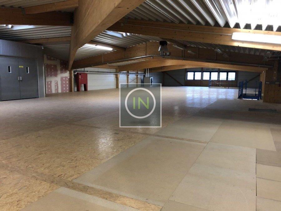 lagerfläche mieten 0 schlafzimmer 1054 m² contern foto 4