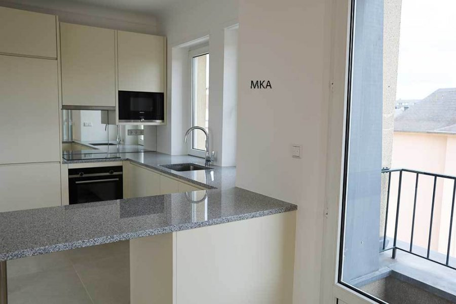 louer appartement 1 chambre 45 m² luxembourg photo 7