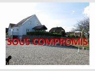 Maison à vendre F6 à Wittelsheim - Réf. 4879998
