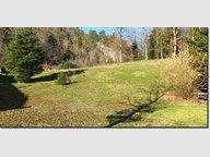 Terrain constructible à vendre à Saint-Nabord - Réf. 6788990