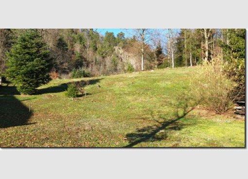 Terrain constructible à vendre à Saint-Nabord (FR) - Réf. 6788990