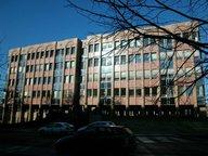 Bureau à louer à Luxembourg-Kirchberg - Réf. 6162062