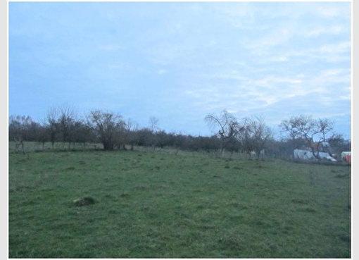 Terrain constructible à vendre à Mirecourt (FR) - Réf. 5457550