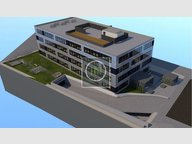 Bureau à vendre à Windhof - Réf. 5406094
