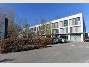 Entrepôt à louer à Windhof (Windhof) - Réf. 6403998