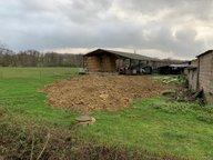 Terrain constructible à vendre à Breistroff-la-Grande - Réf. 7082158