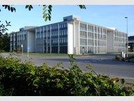 Büro zur Miete in Luxembourg - Ref. 5951918