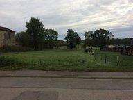 Terrain constructible à vendre à Dommartin-aux-Bois - Réf. 7002030