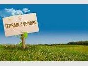 Terrain constructible à vendre à Contz-les-Bains - Réf. 6571198