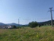 Terrain constructible à vendre à Dommartin-lès-Remiremont - Réf. 6619342
