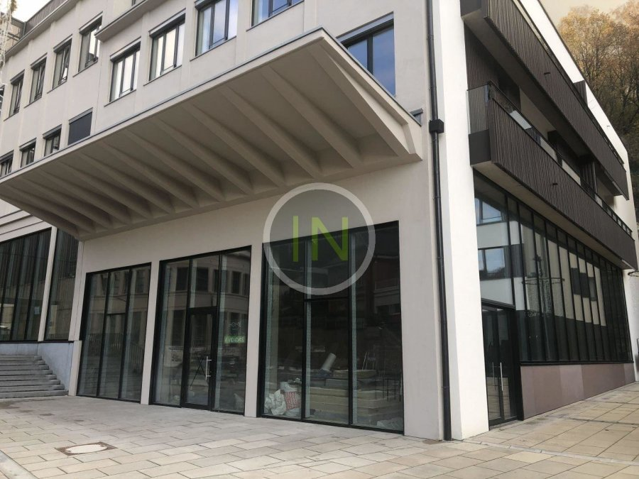 acheter local commercial 0 chambre 303 m² luxembourg photo 1