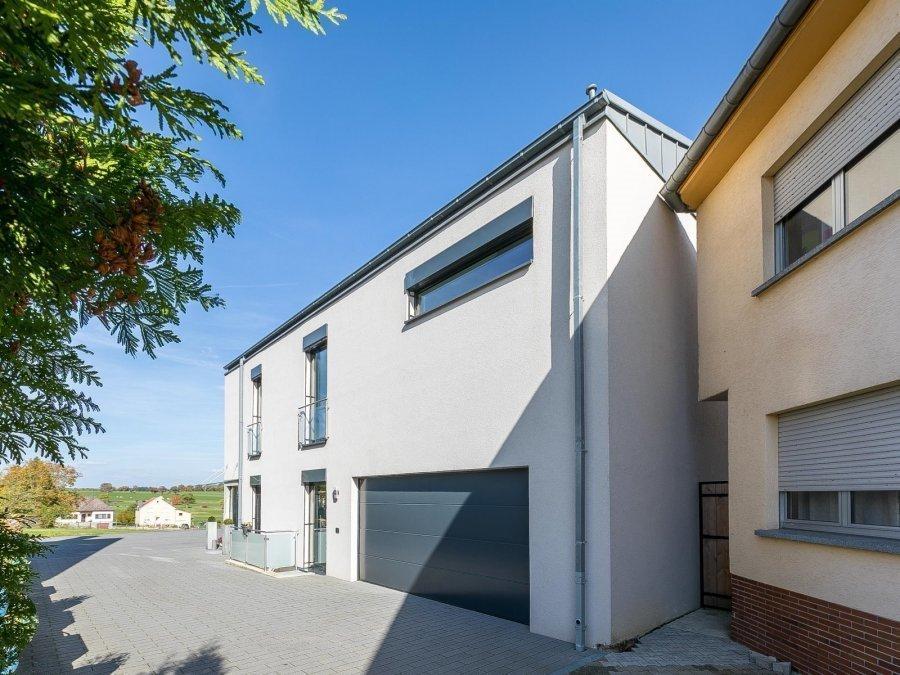 acheter maison individuelle 5 chambres 352.7 m² echternach photo 6