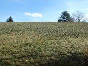 Terrain constructible à vendre à Le Tholy - Réf. 7017950