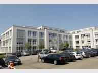 Bureau à louer à Bertrange - Réf. 7338462