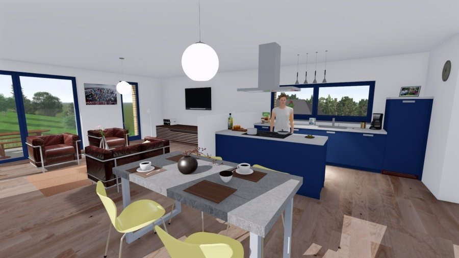 acheter maison individuelle 4 chambres 150 m² bollendorf-pont photo 3