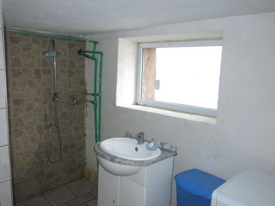 acheter maison 0 pièce 240 m² mettlach photo 3