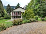 Maison à vendre 10 Chambres à Le Saulcy - Réf. 6404078