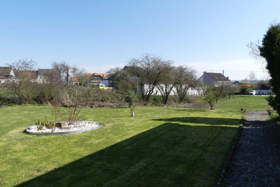 haus kaufen 6 zimmer 183 m² ingendorf foto 5