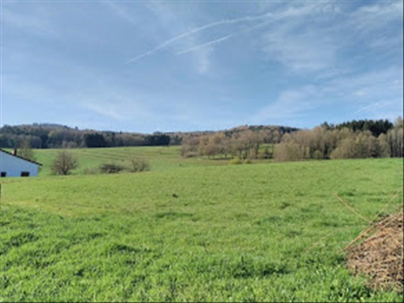 acheter terrain constructible 0 pièce 0 m² la chapelle-devant-bruyères photo 2