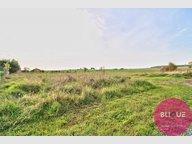 Terrain constructible à vendre à Rambervillers - Réf. 7030543