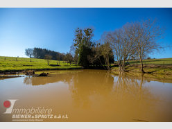 Non building land for sale in Godbrange - Ref. 6679823