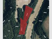 Kein Bauland zum Kauf in Bigonville - Ref. 5723167