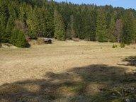 Terrain constructible à vendre à Xonrupt-Longemer - Réf. 6337823