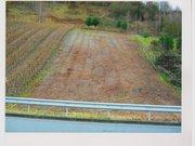 Terrain constructible à vendre à Ensch - Réf. 5486367