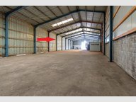 Warehouse for rent in Hoffelt - Ref. 6700063