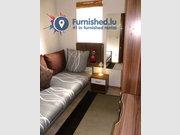 Bedroom for rent 7 bedrooms in Luxembourg-Bonnevoie - Ref. 6704927