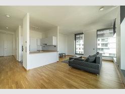 Apartment for rent 2 bedrooms in Belval - Ref. 6943279
