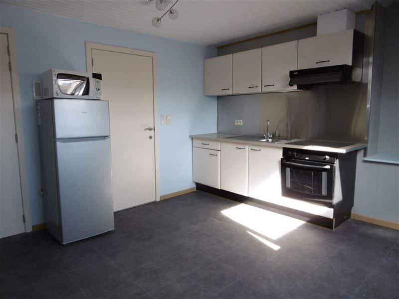 louer appartement 0 pièce 28 m² leuze-en-hainaut photo 1