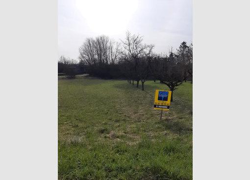 Terrain constructible à vendre à Gondrexange (FR) - Réf. 7121711