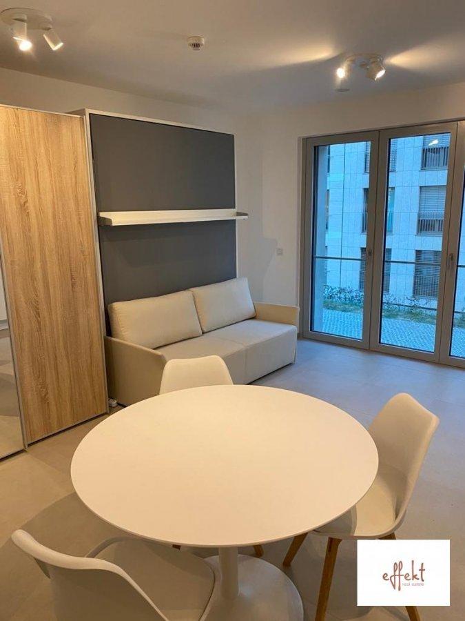 louer studio 0 chambre 31.07 m² luxembourg photo 3