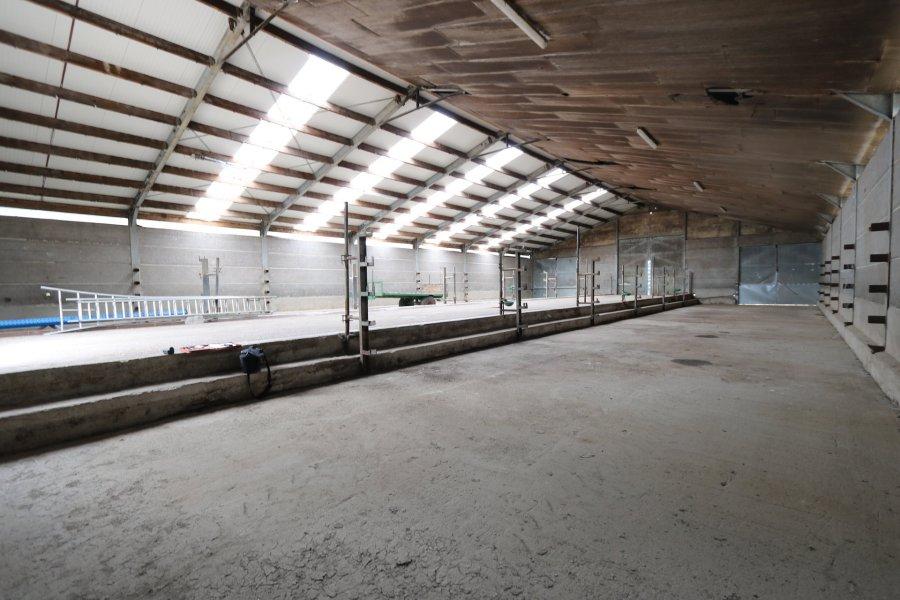 louer entrepôt 0 chambre 300 m² hoffelt photo 2