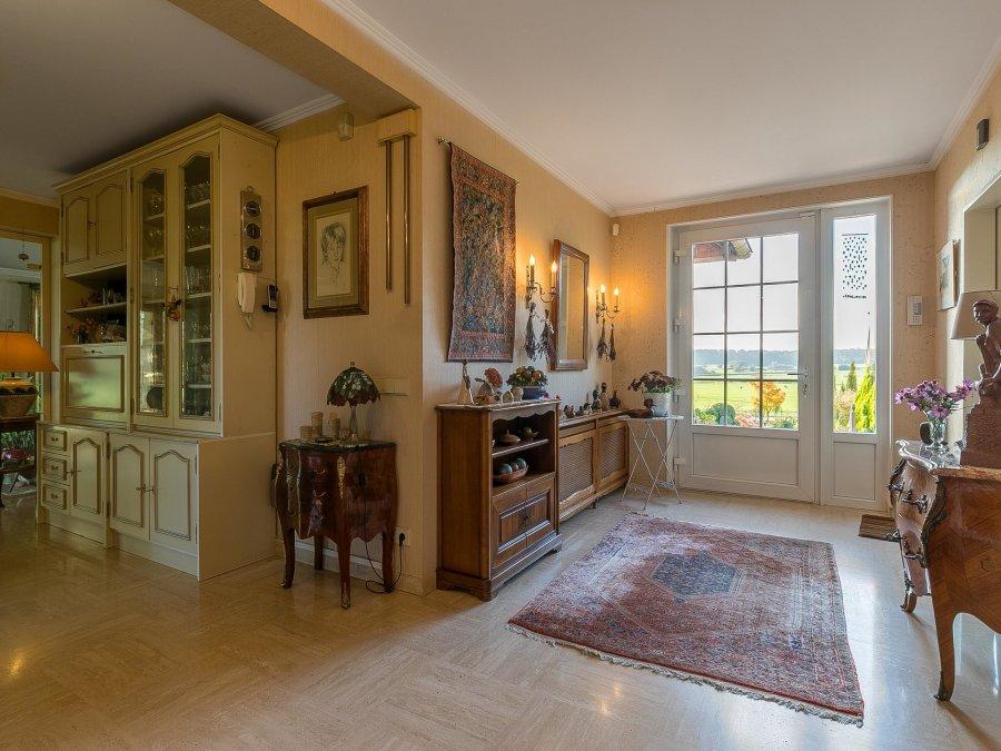 villa for buy 5 bedrooms 312 m² nospelt photo 3