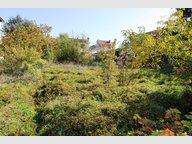 Terrain constructible à vendre à Pont-à-Mousson - Réf. 6971711