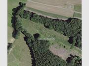 Terrain constructible à louer à Eselborn - Réf. 3339071