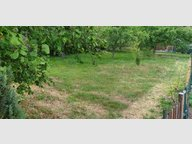 Terrain constructible à vendre à Saint-Nabord - Réf. 6494527